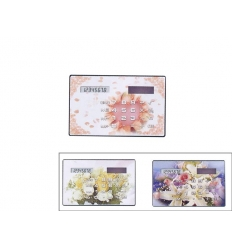 Miniräknare i kreditkortsformat