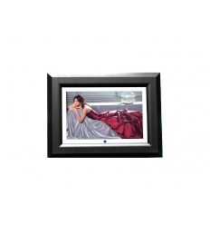 Digital photoframe - 13.3 inch