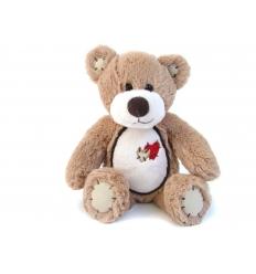 Liten björn