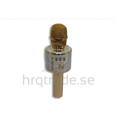 Bluetooth Karaoke-mikrofon